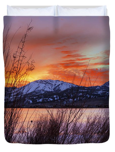 Winter Glow Duvet Cover by Dianne Phelps