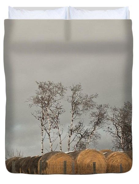 Duvet Cover featuring the photograph Winter Gold by Sandi Mikuse