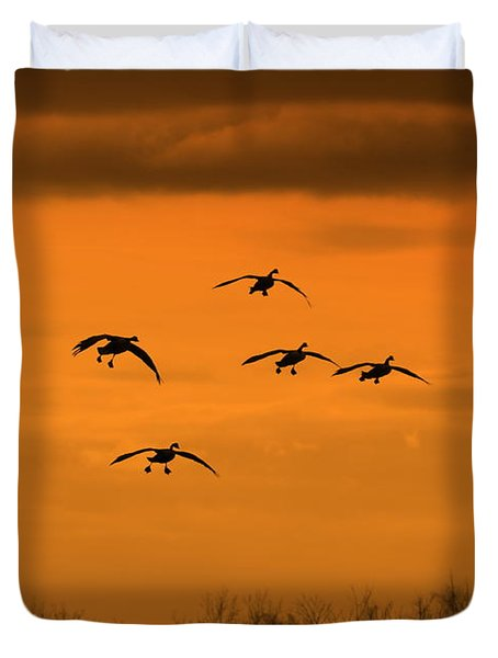 Winter Landing No.2 Duvet Cover by Neal Eslinger