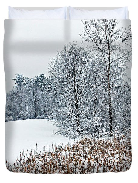 Winter Landscape Duvet Cover by Aimee L Maher Photography and Art Visit ALMGallerydotcom