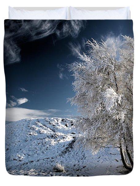 Winter Landscape Duvet Cover by Grant Glendinning