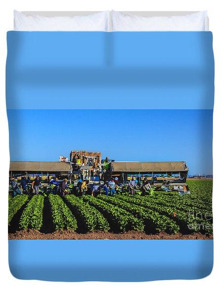 Winter Lettuce Harvest Duvet Cover by Robert Bales