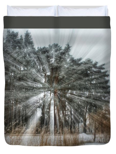 Winter Light In A Forest Duvet Cover