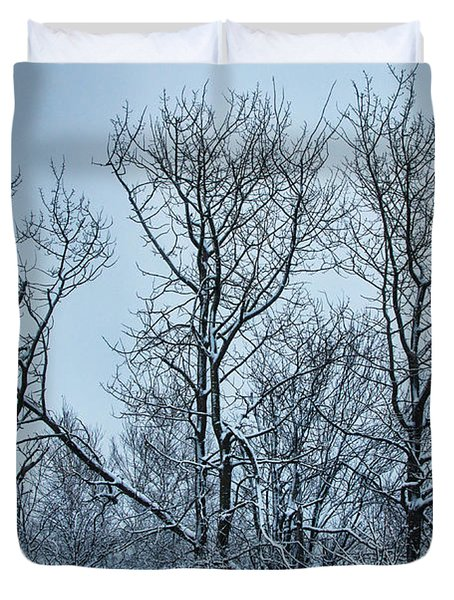 Winter Morning View Duvet Cover