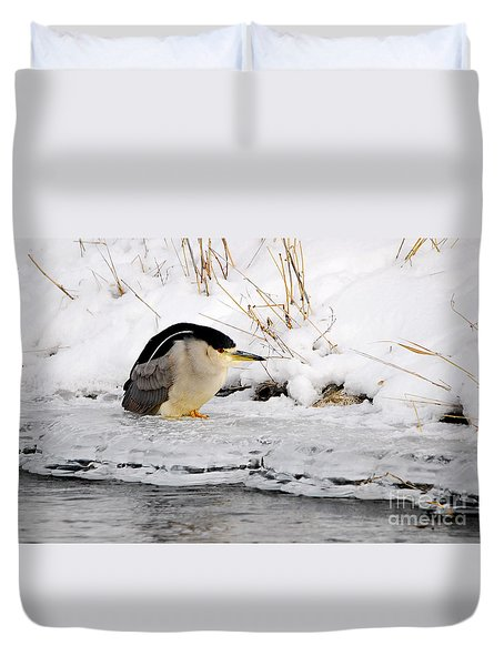 Winter Night Heron Duvet Cover