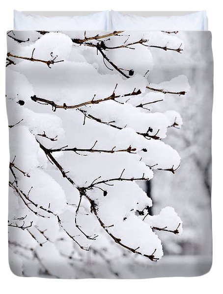 Winter Park Under Heavy Snow Duvet Cover by Elena Elisseeva