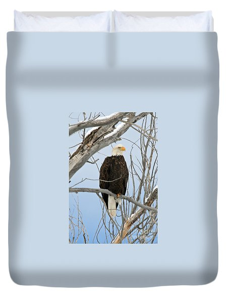 Winter Perch Duvet Cover