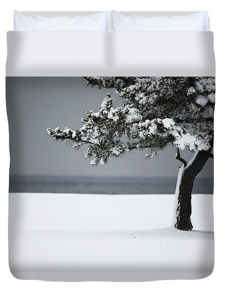 Winter Quiet Duvet Cover by Karol Livote