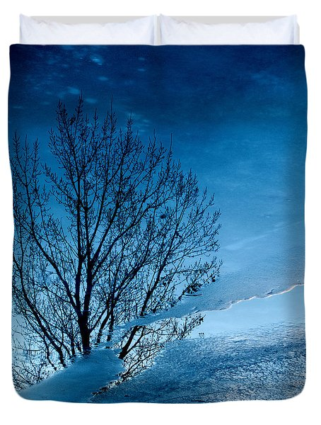 Winter Reflections Duvet Cover by Don Spenner