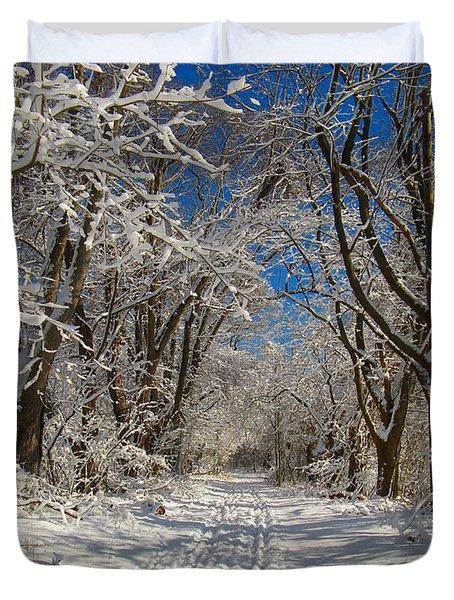 Winter Road Duvet Cover by Raymond Salani III