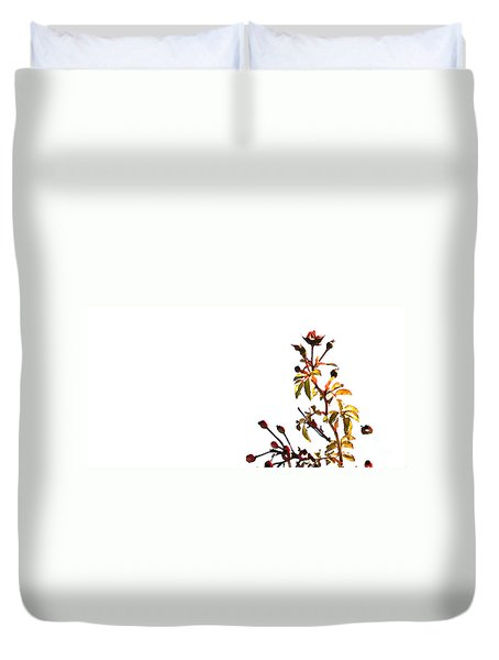Duvet Cover featuring the photograph Winter Rose by Linda Shafer