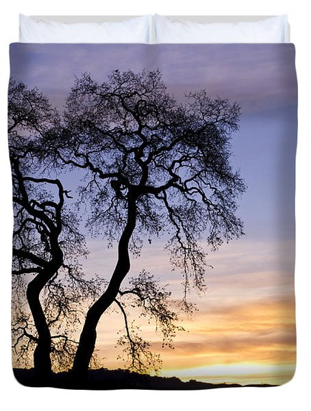 Winter Sunrise With Tree Silhouette Duvet Cover by Priya Ghose