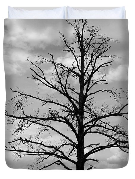 Duvet Cover featuring the photograph Winter Tree by Andrea Anderegg