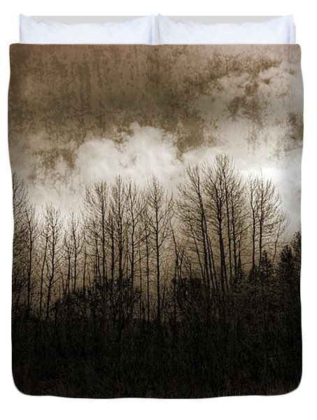 Winter Trees Duvet Cover by Dianne Phelps