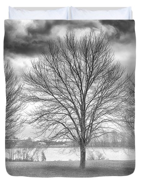 Winter Trees Duvet Cover by Howard Salmon