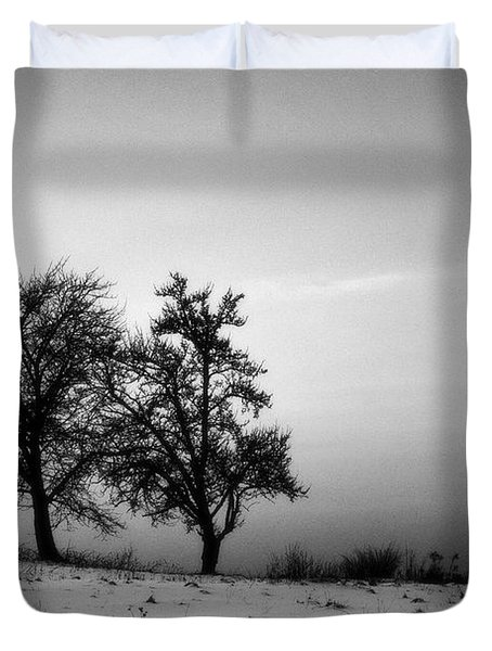 Winter Trees Duvet Cover by Tomasz Dziubinski