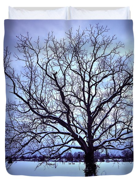 Duvet Cover featuring the photograph Winter Twilight Tree by Jaki Miller