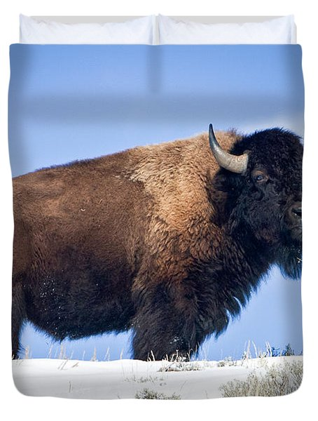 Duvet Cover featuring the photograph Winter Warrior by Jack Bell