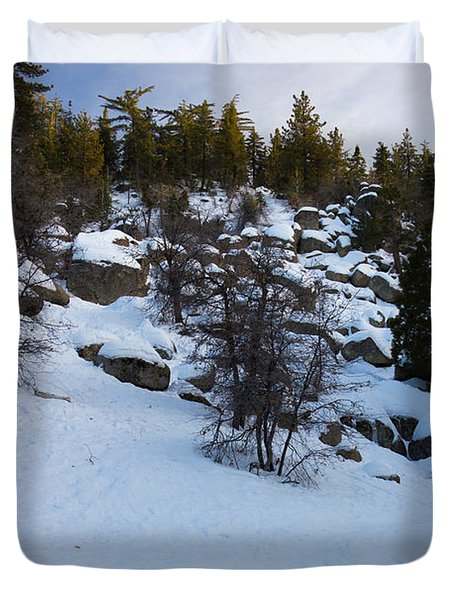 Winter White Duvet Cover by Heidi Smith