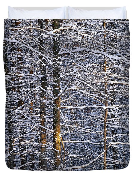Duvet Cover featuring the photograph Winter Woods by Alan L Graham
