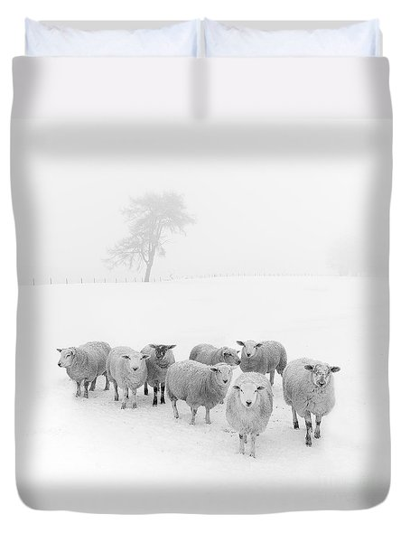 Winter Woollies Duvet Cover by Janet Burdon