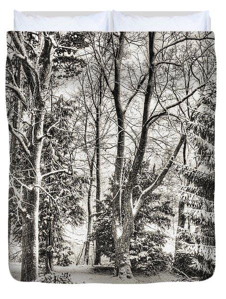 Winter Zauber 03 Duvet Cover