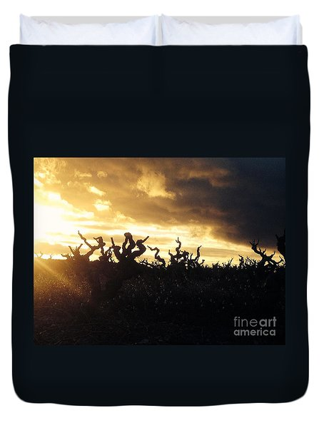 Winters Eve In The Vineyard Duvet Cover by France  Art