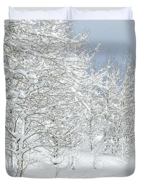 Winter's Glory - Grand Tetons Duvet Cover by Sandra Bronstein