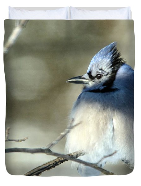 Winter's Jay Duvet Cover