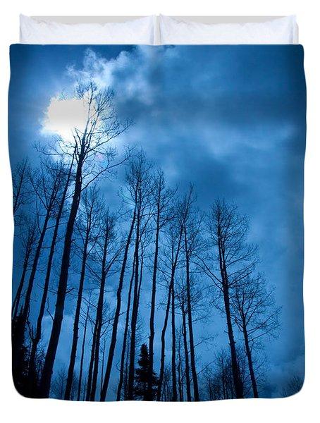 Winters Sky Duvet Cover by Dana Kern