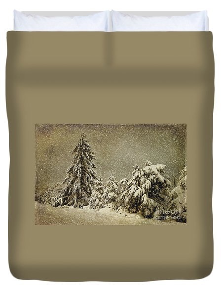 Winter's Wrath Duvet Cover by Lois Bryan