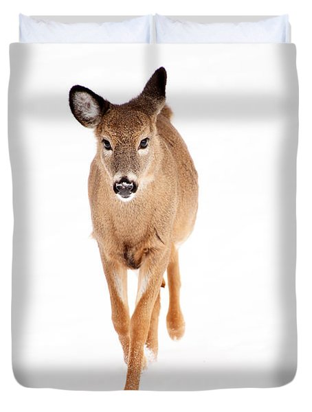 Winters Young Duvet Cover by Karol Livote