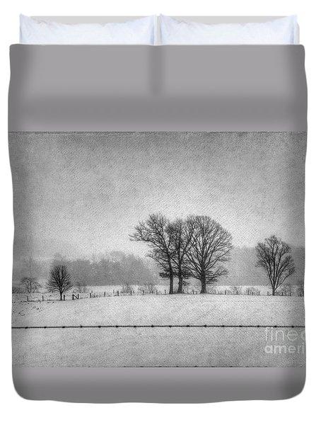 Wintry Scene Duvet Cover by Dan Friend
