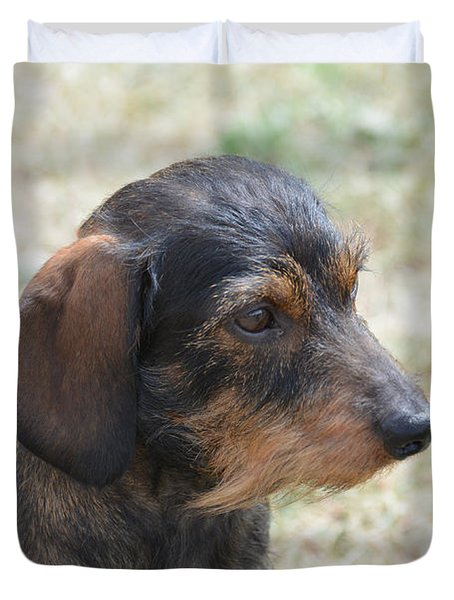 Wire Haired Daschund Duvet Cover