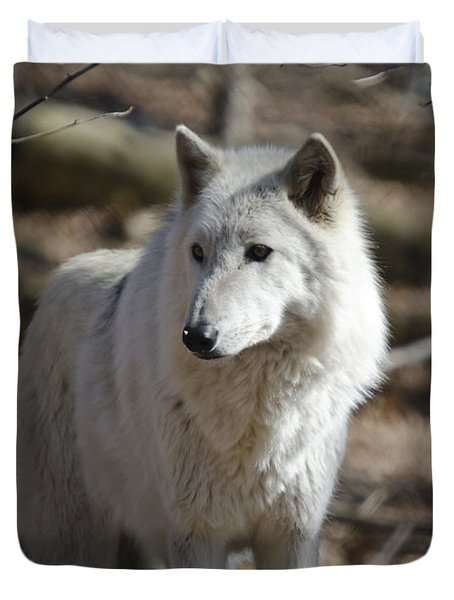 Timber Grey Wolf Duvet Cover