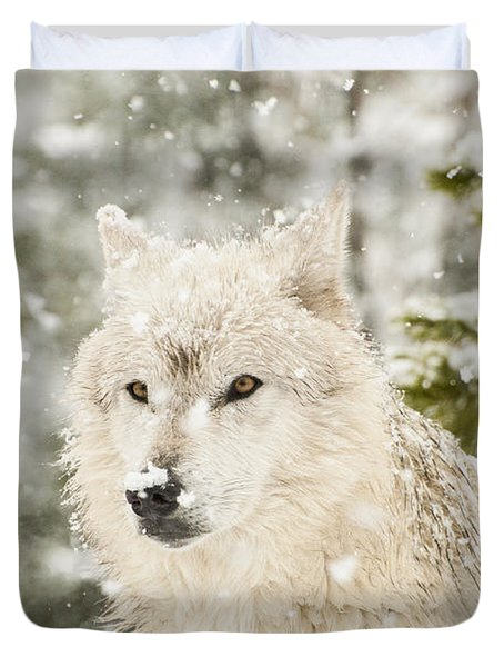 Wolf In Snow Duvet Cover