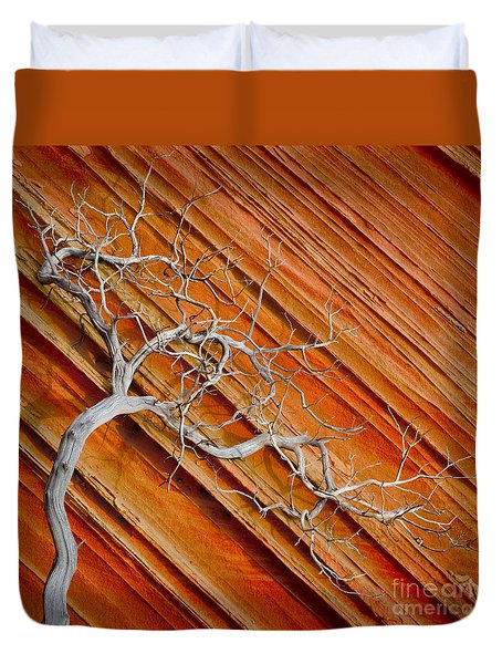 Wood And Stone Duvet Cover by Inge Johnsson