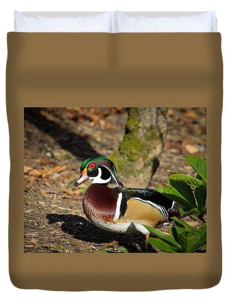 Wood Duck In Hiding Duvet Cover by Steve McKinzie