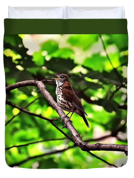 Wood Thrush Singing Duvet Cover by Chris Flees