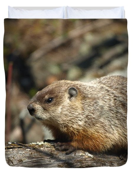 Duvet Cover featuring the photograph Woodchuck by James Peterson