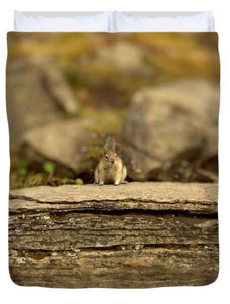 Woodland Critter Duvet Cover