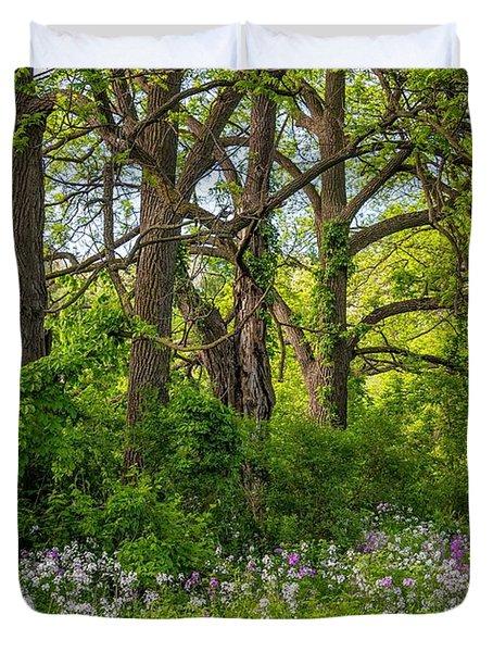 Woodland Phlox 2 Duvet Cover by Steve Harrington