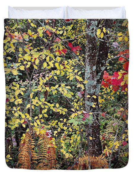Duvet Cover featuring the photograph Woodland Tapestry by Alan L Graham
