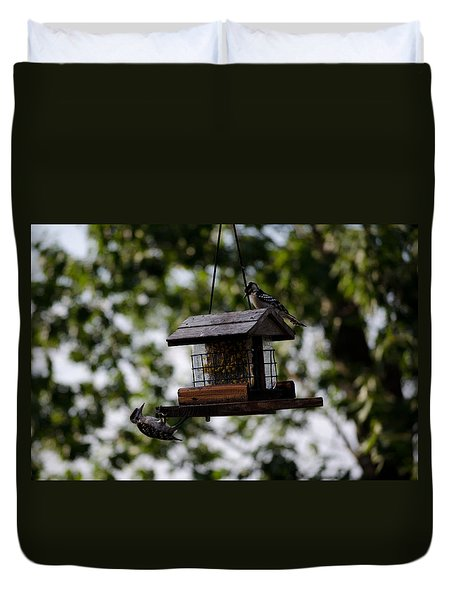 Woodpeckers At Dinner Duvet Cover