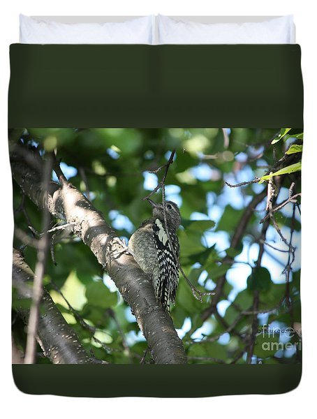 Worn Out Woodpecker Duvet Cover