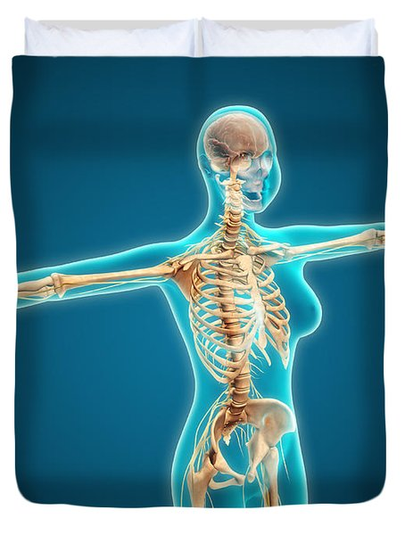 X-ray View Of Female Body Showing Duvet Cover by Stocktrek Images