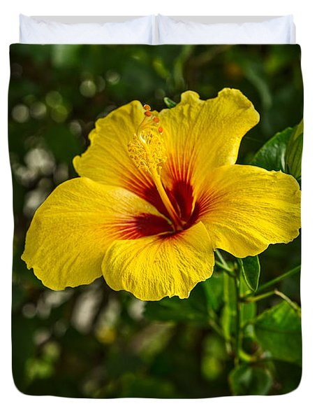 Yellow - Beautiful Hibiscus Flowers In Bloom On The Island Of Maui. Duvet Cover