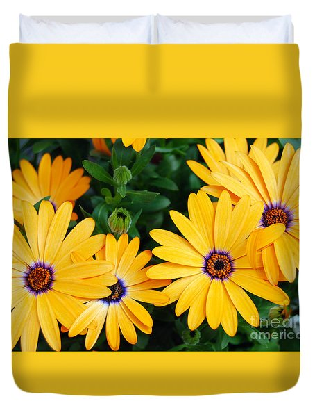 Duvet Cover featuring the photograph Yellow African Daisy by Eva Kaufman
