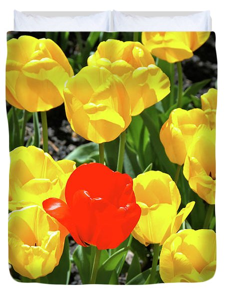 Yellow And One Red Tulip Duvet Cover