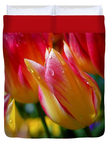 Yellow And Pink Tulips Duvet Cover by Rona Black